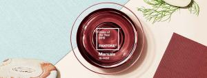 Pantone_Color_of_the_Year_Marsala_Color_Intelligence_Banner 2015
